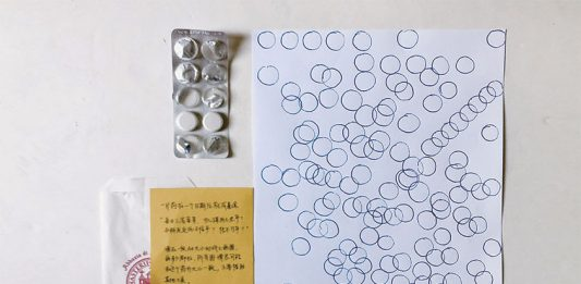Tianyi Xu – Copy plan / dissoluzione e ricostruzione della funzione