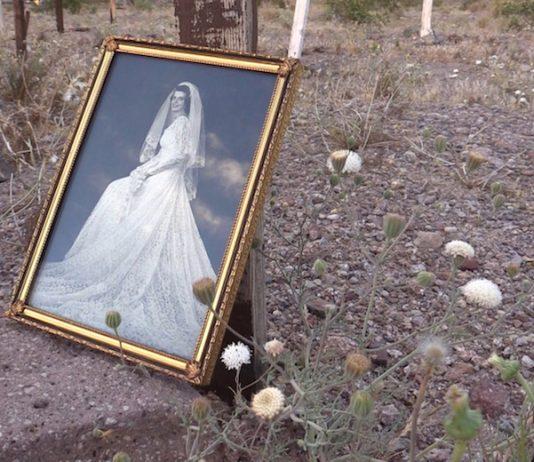 Un'Ora d'Arte – Love In A Dying World di Samantha Stella