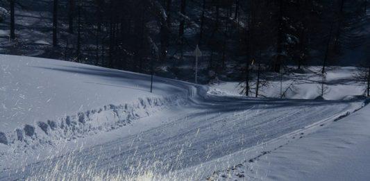 Laura Pugno – L'invisibilità dell'inverno