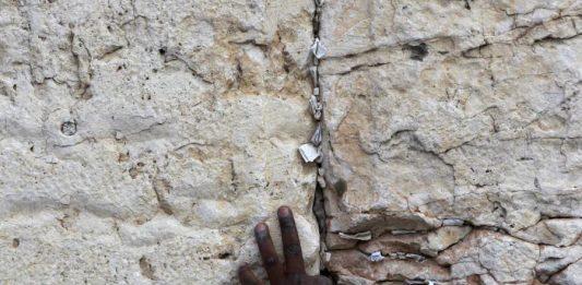 Poesie per un Mondo senza Muri