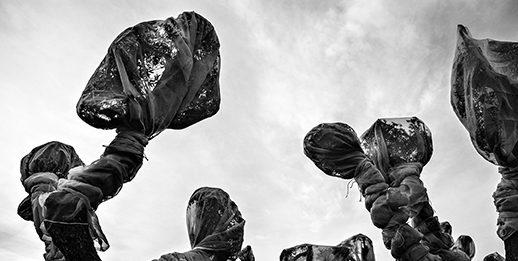 Ulderico Tramacere – Nylon