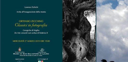 Ortensio Zecchino – Classici in Fotografia