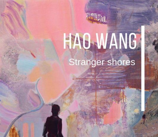 Hao Wang – Stranger shores
