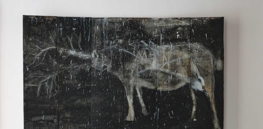 Marino Ficola – Ombra