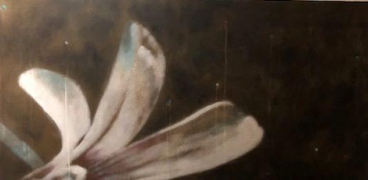 Massimo Barlettani – Flò – la luce dell'effimero