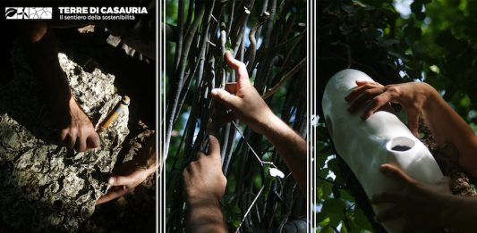 Premio/Residenza artistica Terre di Casauria. Il sentiero della sostenibilità