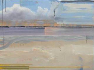 """Nicolás Pallavicini """"Anatomia del Paesaggio"""" 2007"""