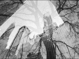 Della serie Inverse landscape New York (2008)