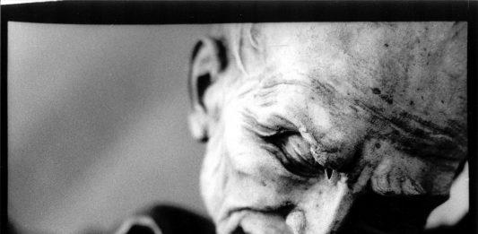 Paolo Novelli – Vita brevis, Ars longa