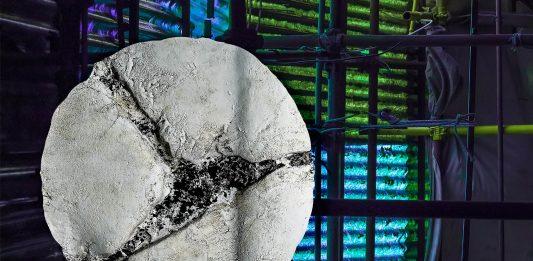 Eugenio Donato / Alessandro Zazza – Roma. Frammenti da una città che vive.