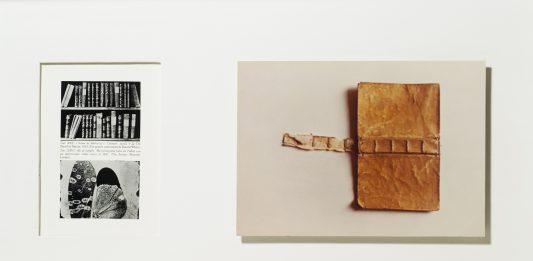 Franco Guerzoni – L'immagine sottratta