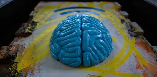 Urban Solid – Urban Brain