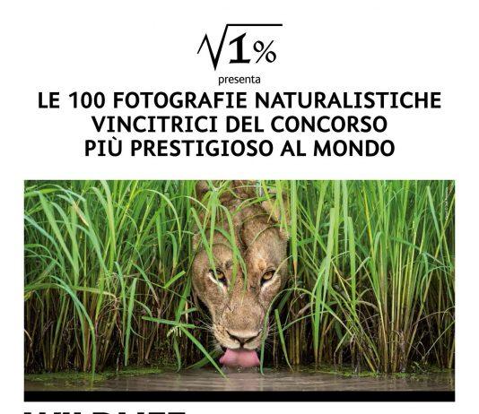 Wildlife Photographer of the Year 54