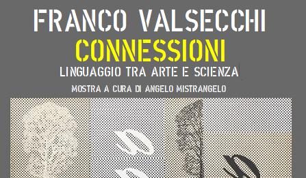 Franco Valsecchi – Connessioni. Linguaggio tra arte e scienza