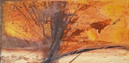 Maria Fausta Pansera – Colori in divenire