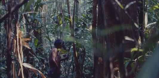 Julien Bismuth – Hiaitsiihi