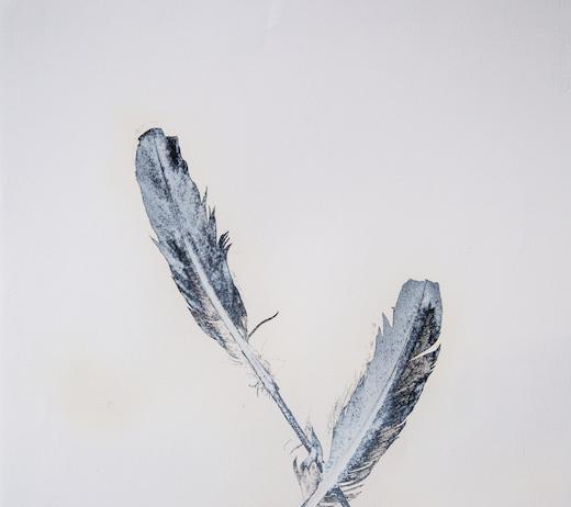 Julia Bornefeld – Leda e il cigno nero
