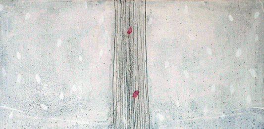 Raffaele Boemio –  Migrazioni di forme mute