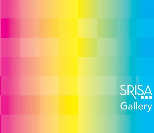 Artists working at SRISA – Habitat