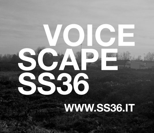 VoicescapeSS36. Echi dalla strada