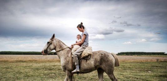 Gianluca Colonnese – Sol de mayo. El gaucho y la ganaderia