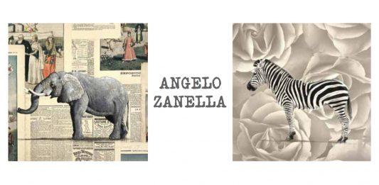 Angelo Zanella – L'arca delle meraviglie