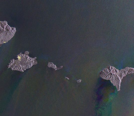 Gayle Chong Kwan – Waste Archipelago