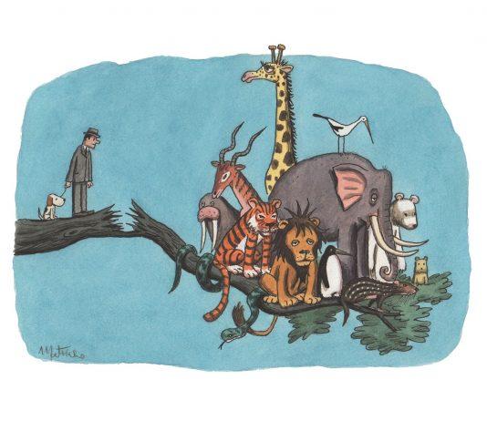 Franco Matticchio – L'arca
