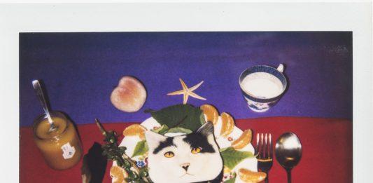 Rosa Foschi – Polaroid ROSA & film FOSCHI